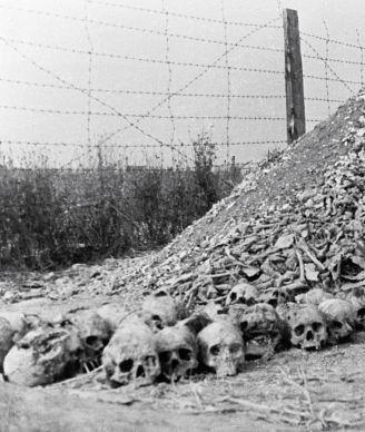 Гора из человеческих костей и пепла расстрелянных и сожженных заключенных лагеря смерти.