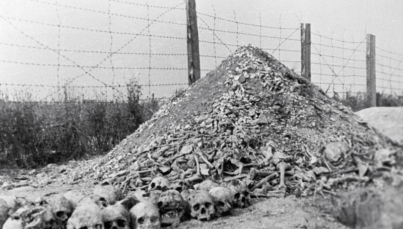 Останки узников одного из концлагерей
