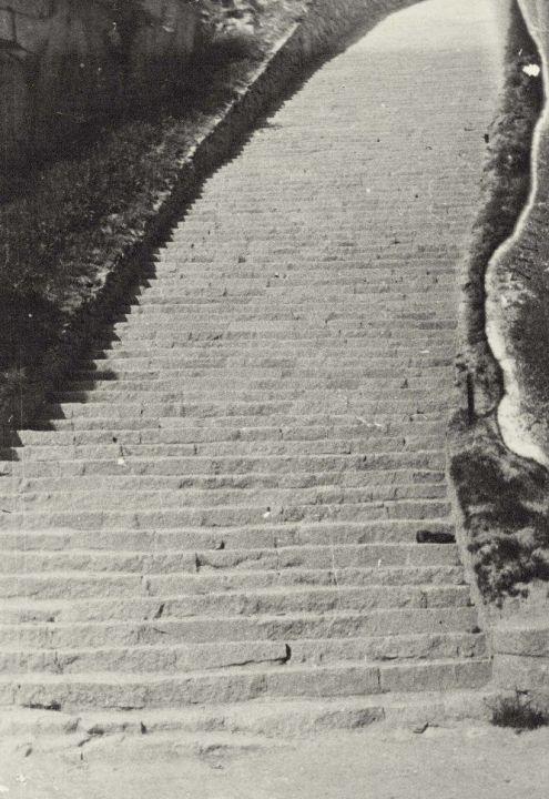 """""""Der Steinbruchbetrieb von Mauthausen, der in einer Tiefe lag, lag etwa 800 Metern vom Lager entfernt … Man musste 186 Stufen nach oben bzw. nach unten gehen. Das war ein schwerer Weg, denn diese Treppe war so gebaut, dass selbst, wenn man ohne Bürde aufging, man oben schon erschöpft war … Wir begannen unsere Arbeit um 07.00 Uhr morgens. Um 08.00 Uhr, also eine Stunde später, waren zwei von meinen Kameraden schon tot. Das waren der alte Monsieur Gregoire aus Lyon und der noch sehr junge Lefebvre aus Tours. Sie wurden getötet, weil sie einen Befehl in deutscher Sprache nicht verstanden hatten."""""""