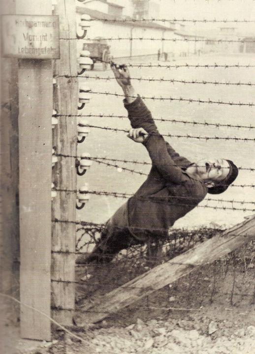 """""""Sie schleppten Steine, und man schlug sie und zwang sie, die schwersten Steine zu nehmen. Das dauerte so lange, bis die Häftlinge, die am meisten verzweifelt waren, zum Stacheldraht gingen. Wenn sie zum Stacheldraht nicht selbst gehen wollten, wurden sie zusammengeschlagen … Wenn sie einen Meter weit von diesem Stacheldraht waren, wurden sie von SS-Wächtern aus Maschinenpistolen erschossen. Das war das übliche System: 'Mord beim Fluchtversuch'… Sie wurden von den SS-Wächtern zum Stacheldraht getrieben … Und das ganze Personal in Mauthausen wusste das. Ein paar Mal weigerten sich die Wächter, zu schießen, und sagten, das wäre kein Fluchtversuch. Sie wurden sofort entlassen – und sie verschwanden."""""""