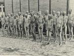 """Maurice Lampe: """"Ein Transport mit 2500 Häftlingen verließ Sachsenhausen und traf am 17. Februar in der Früh in Mauthausen ein. Das waren etwa 1700 Menschen. Noch 800 Menschen wurden unterwegs getötet oder sind gestorben. Damals war das Lager Mauthausen vollgestopft, wenn ich es so ausdrücken darf. Deshalb wählte der Kommandant Dachmeier 400 kranke, alte und schwache Menschen aus, denen gesagt wurde, sie würden in ein Lazarett geführt. Diese 400 Leute wurden bei einem Frost von minus 18 Grad nackt ausgezogen und für 18 Stunden so gelassen … Sie befanden sich zwischen der Wäscherei und der Mauer, die das Lager umgab … Wenn wir das Gelände verließen und zurückkehrten, hatten wir dieses traurige Bild gerade vor unseren Augen … Manche von ihnen waren schon sehr schnell versteinert, aber die SS-Leute dachten, das wäre noch nicht genug. In dieser Nacht wurden sie dreimal gezwungen, in die Dusche zu gehen, wo sie unter eiskaltem Wasser stehen und dann wieder nach oben gehen mussten, ohne sich abzutrocknen. Am Morgen, als unsere Brigaden zur Arbeit kamen, lagen da nur noch die Leichen. Ich muss sagen, dass man die letzten von ihnen mit dem Beil totgeschlagen hatte."""""""