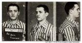 Francois Boix, der bereits einige Lager hinter sich hatte, wird am 27. Januar 1941 zum Häftling Nr.5185 im KZ Mauthausen. Der 20-Jährige überlebte im Lager dank seines Berufs – er wurde zur Arbeit ins Fotolabor geschickt. Seine offizielle Aufgabe war das Fotografieren der Häftlinge, falls sie fliehen, und Parade-Aufnahmen für Berichterstattungen nach Berlin. Doch in der Praxis schossen die Fotografen (sie alle waren SS-Offiziere) Bilder vom ganzen Geschehen in dem Lager – Erschießungen, Selbstmorde, Alltag und Arbeit der Häftlinge. Zusammen mit einem anderen Laboranten – dem Spanier Antonio Garcia Alonso - beschloss Francois, Negativfilme von entlarvenden Aufnahmen zu stehlen und zu verstecken. Selbst konnten sie das Lager nicht verlassen, weshalb sie gefangene Spanier kontaktierten, die jeden Tag zur Arbeit in einer Grube nahe der Stadt Mauthausen gebracht wurden. Junge Häftlinge lernten die Einheimische Anna Pointner und ihre Töchter kennen. Die Spanier brachten geheime Negativfilme von Tausenden Aufnahmen nach außerhalb des Lagers; die Familie Annas versteckte sie in einer Mauer nahe ihres Hauses.