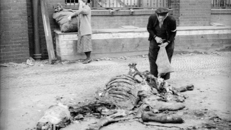 Les Berlinois coupent la chair d'un cheval mort, avril 1945 / Projet «Le dernier exploit de Nikolaï Berzarine»