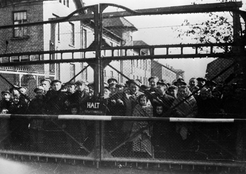 Prisonniers du camp d'Auschwitz, janvier 1945.