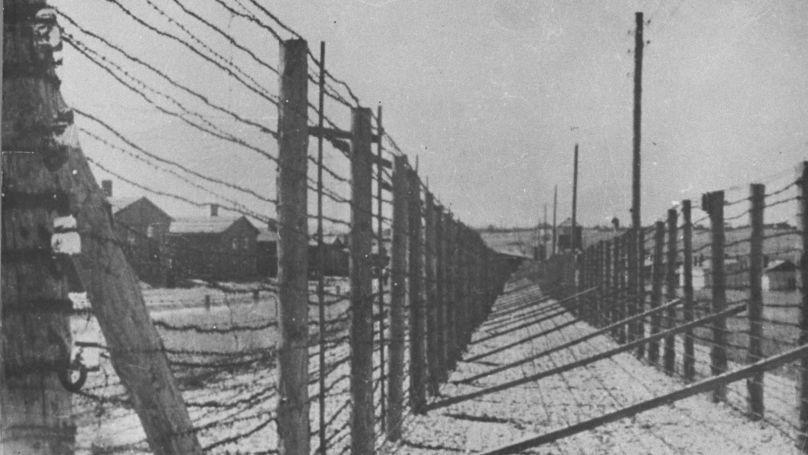 Barbed wire at Majdanek camp