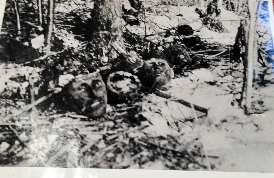 Des prisonniers de guerre soviétiques ont été enterrés vivants. Sur la photo: têtes des personnes enterrées, région de Briansk