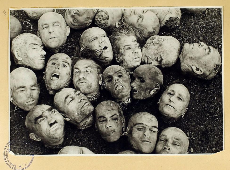 Les têtes coupées des civils. À partir d'un album d'archives avec des photographies des atrocités commises par les nazis contre des civils à Liepaja (RSS de Lettonie), Dantzig et Lvov / Archives d'État de la Fédération de Russie F. R-7021. Op. 128. D. 276. L. 8