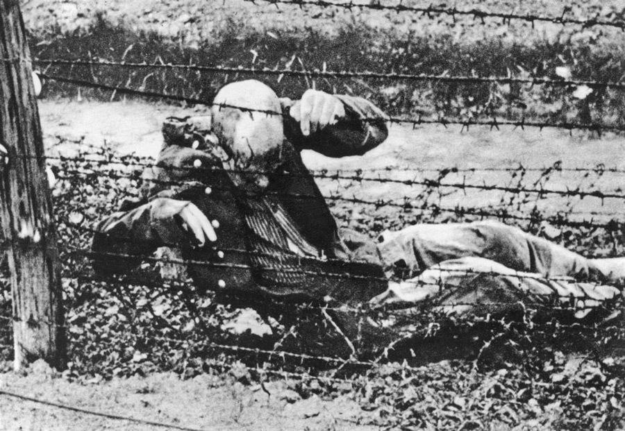 Prisonnier de camp de concentration sur un barbelé. Photo des archives de la Croix-Rouge internationale. Croix-Rouge polonaise. Polish Red Cross.